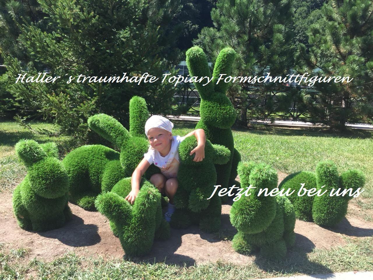 Garten Und Landschaftsbau Thomas Haller Garten Und