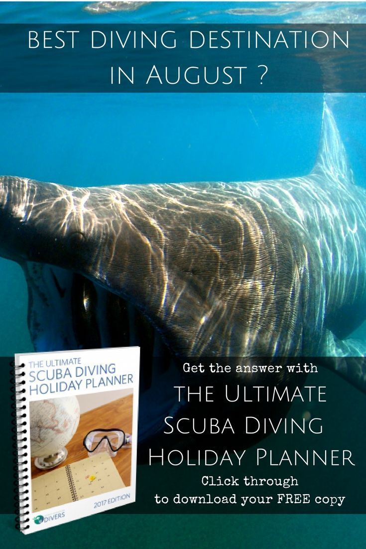 The Ultimate Scuba Diving Holiday Planner