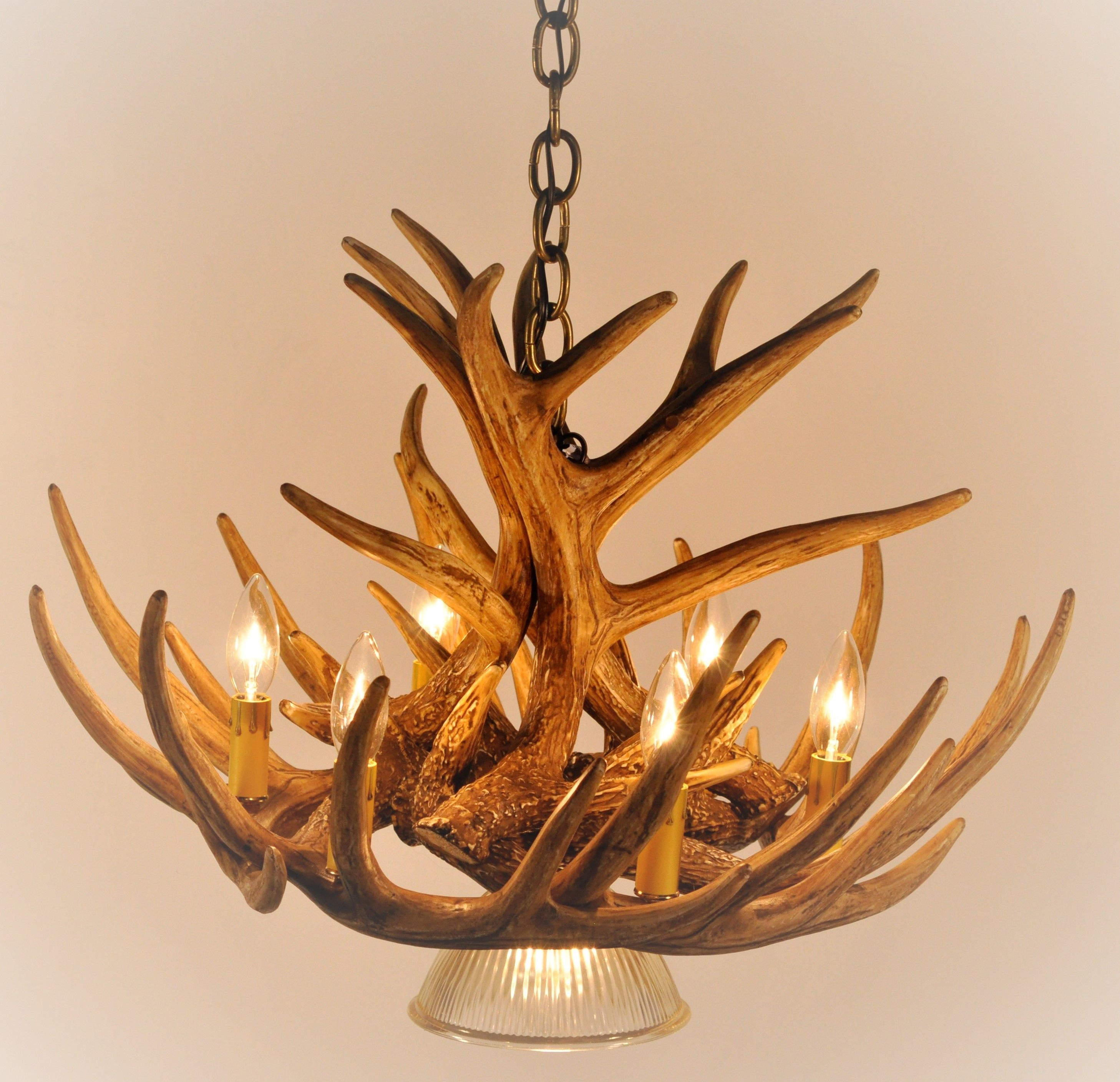 Deer antler ceiling lights httpcreativechairsandtables deer antler ceiling lights aloadofball Choice Image