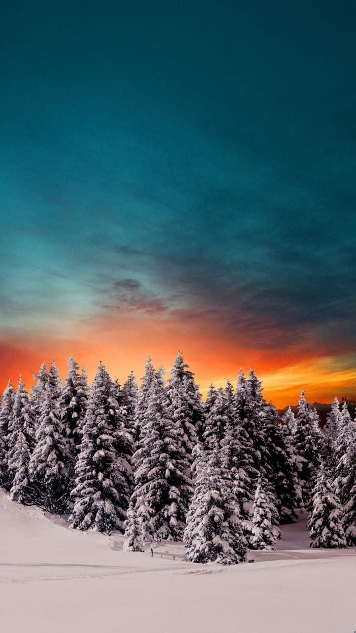 Image About Winter In No Place Like Home By Mihaela