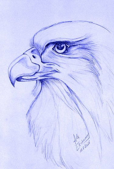 Tecnica Para Aprender A Dibujar Muy Bien Paginas De Dibujos Dibujos Animales Dibujados A Lapiz