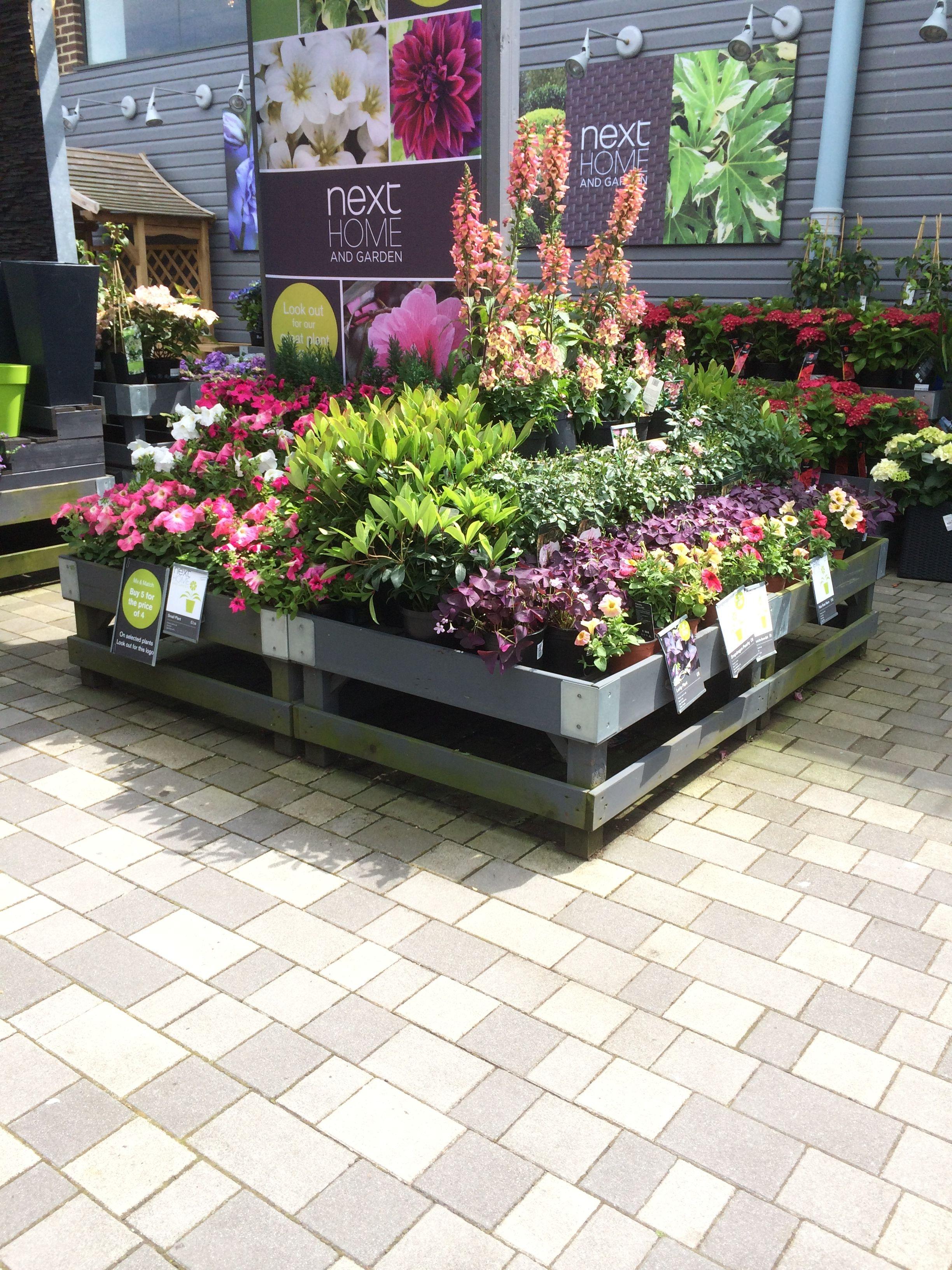 Next Home Garden Home Decorating Centre Garden