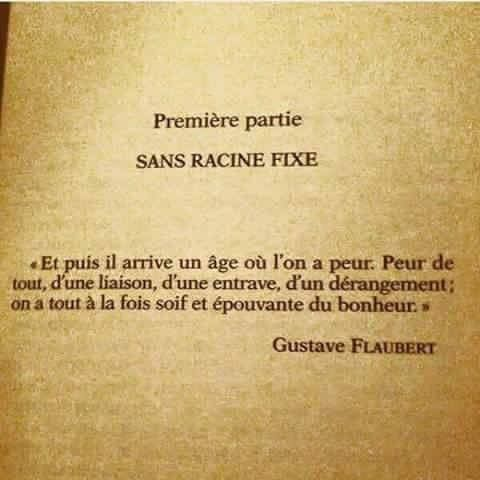 Gustave Flaubert Citation Poeme Et Citation Et Proverbes