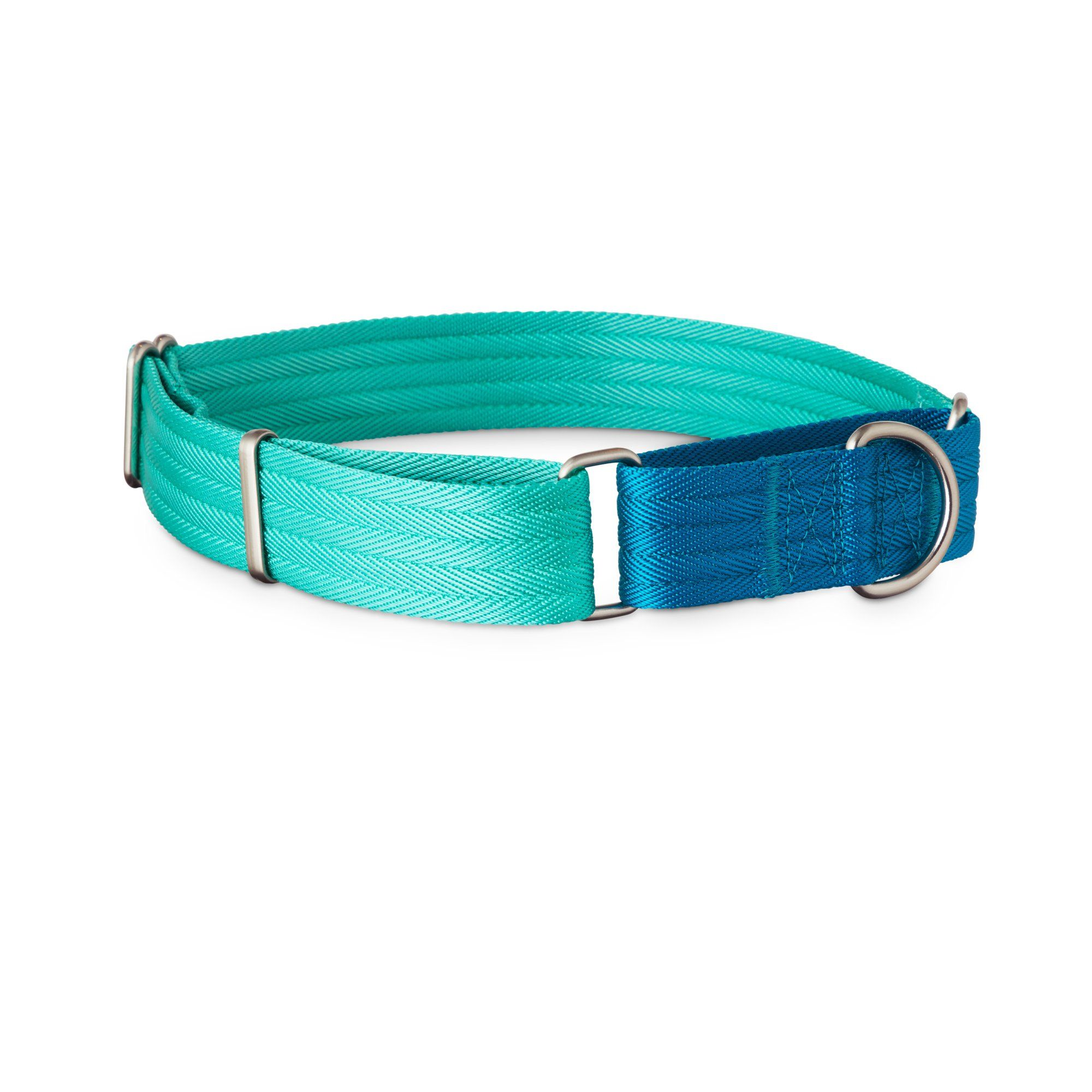 Good2go Teal And Blue Two Tone Martingale Dog Collar Large