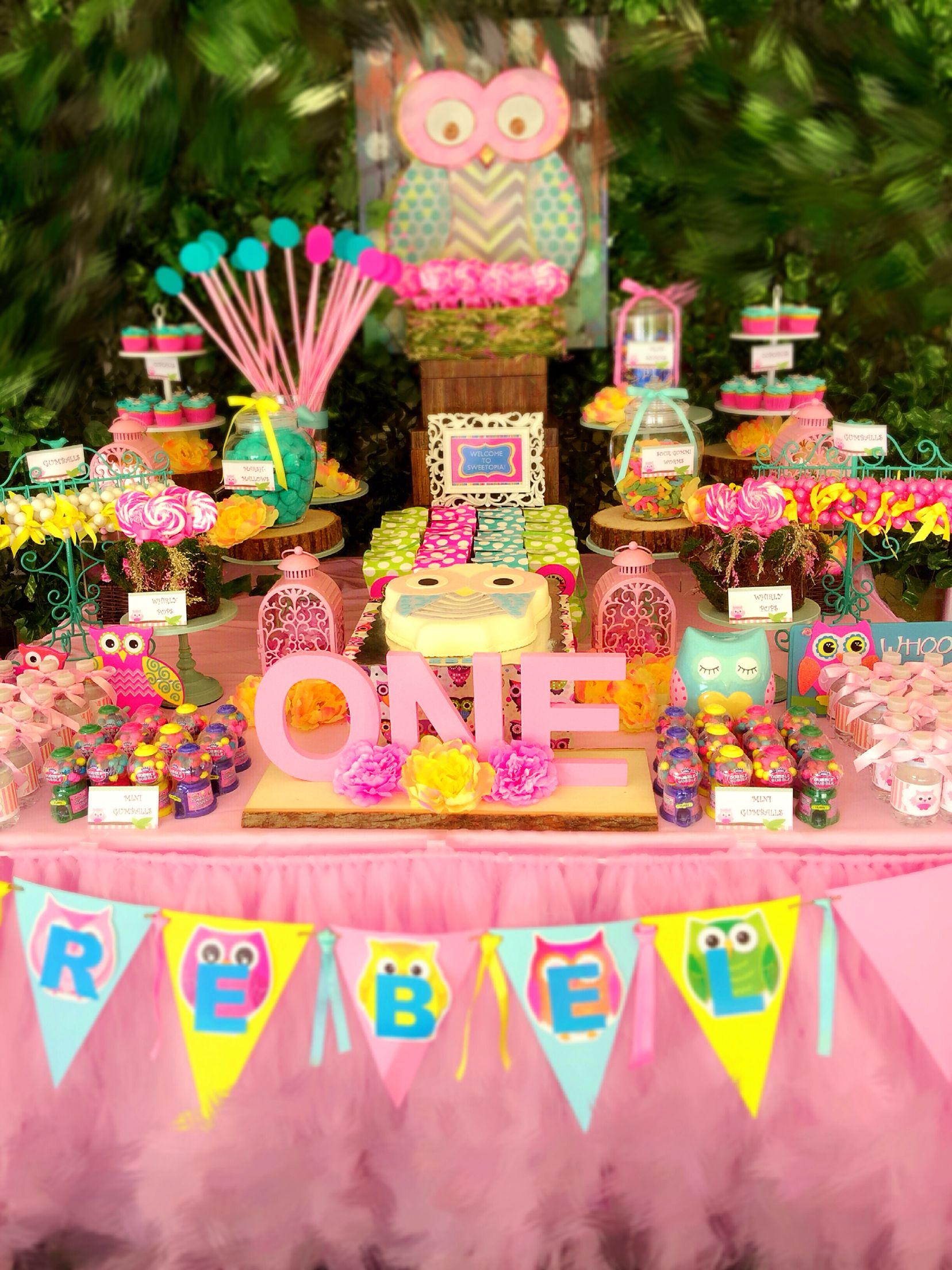 owl themed first birthday party teal pink and yellow candy buffet owl shaped cake and custom. Black Bedroom Furniture Sets. Home Design Ideas