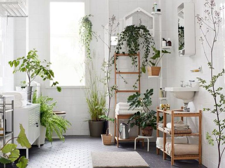 Pianta Soggiorno ~ Arredare casa con le piante: si può! design post pinterest