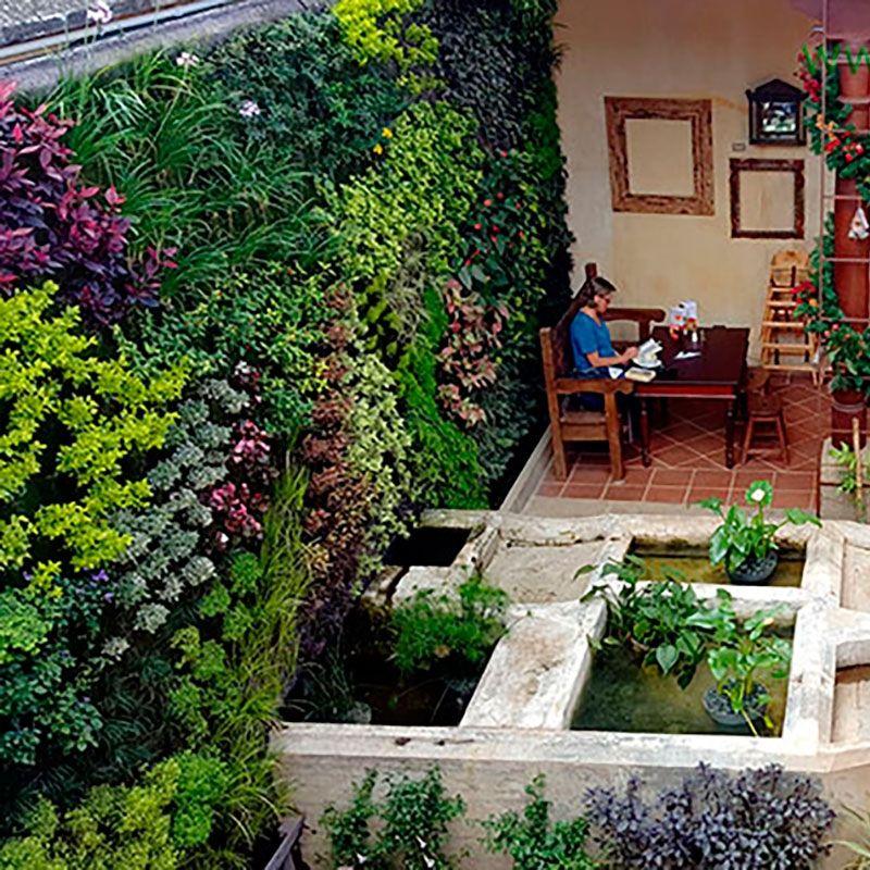 jardn vertical en guatemala restaurante en antigua