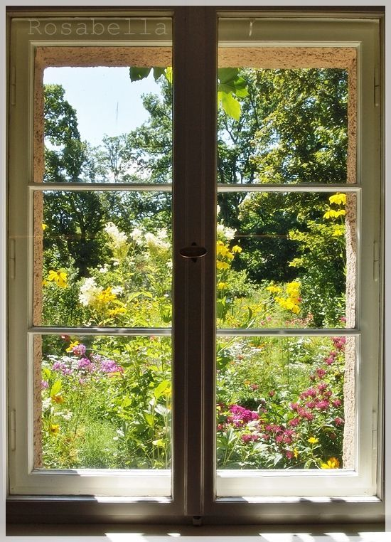 view from a window of the flower garden