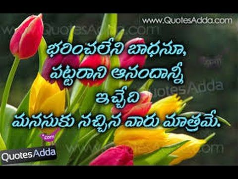 Download Free Latest Happy Valentine S Day 2016 Video In Telugu For