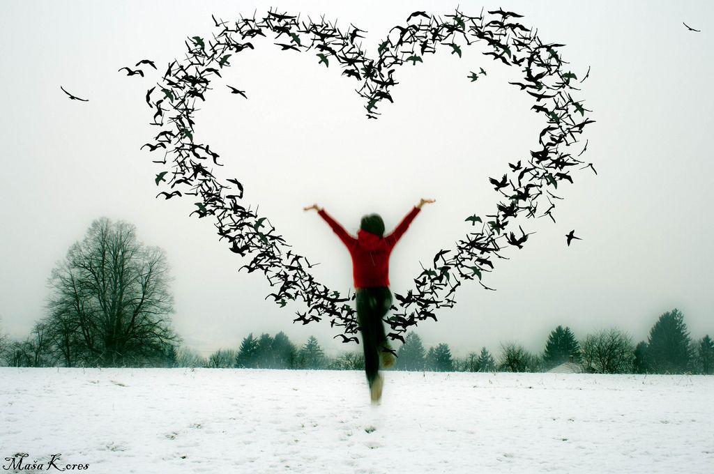 *•???? bumble~bee ????•*, new year, love heart, love