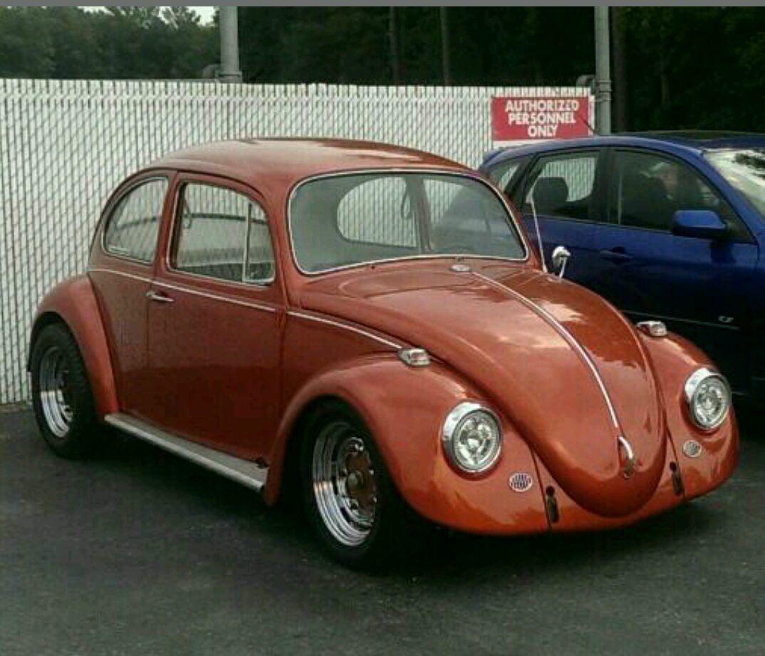 del rent a bug volkswagen cuyo vw puerto description rentals bugs