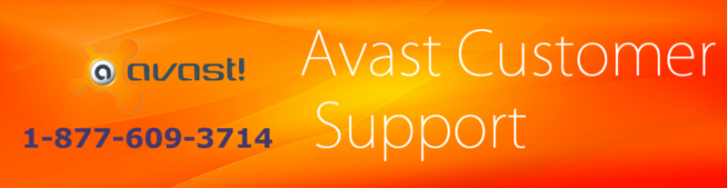 Pin by Daniel Banks on Avast Antivirus Support Computer