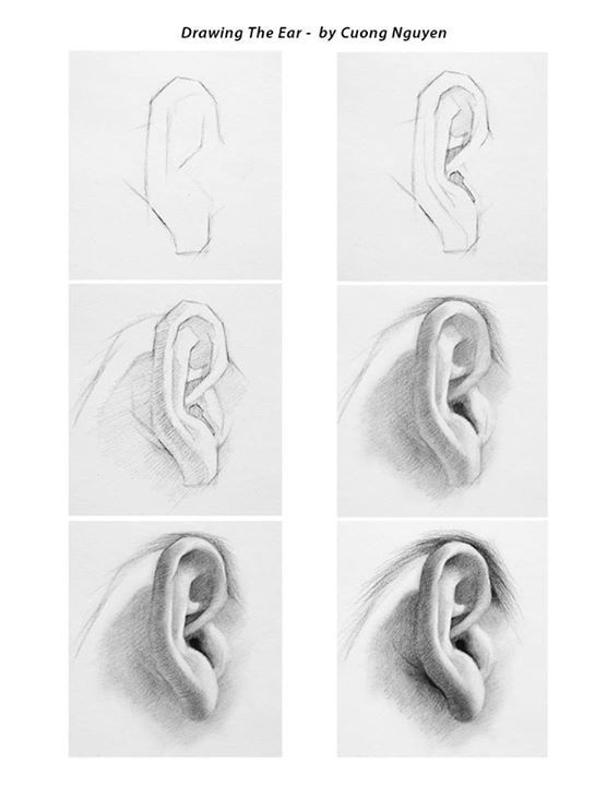 Image result for realistic ear drawing step by step | Jano Kuns ...