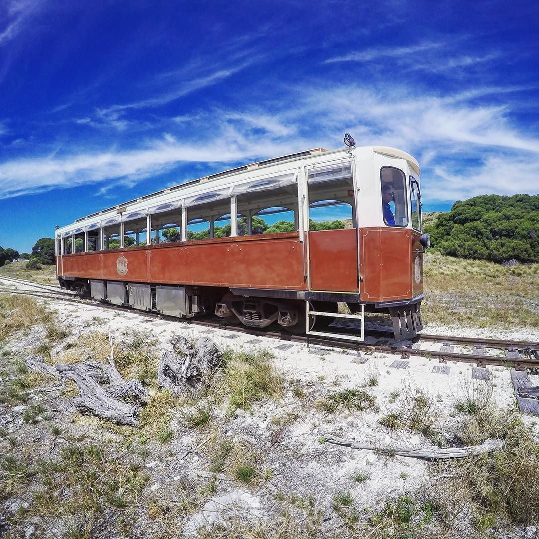 The old tram on Rottnest Island.  #rottnestisland #perth #westernaustralia #australia #australiagram #ig_australia #seeaustralia #discoveraustralia #aussiephotos #wanderaustralia #roadtrip #ontheroad #adventure #travel #travelgram #instatravel #tram #train #railway #railways_of_our_world #sky #skyporn #clouds #cloudporn #summer #heritage #vintage #gopro #goprophotography by gav679 http://ift.tt/1L5GqLp