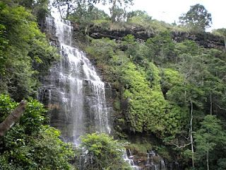 Krantzkloof Nature Reserve Is Close To Durban And Only 4km From Kloof Enjoy Hiking Trails To Lovely Waterfalls And Stop For A Picn Kloof Nature Reserve Scenic