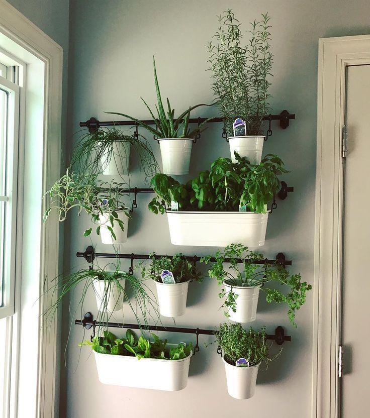 Photo of Indoor herb gardens on Instagram for the kitchen in 2020   Diy herb garden, Herb garden in kitchen