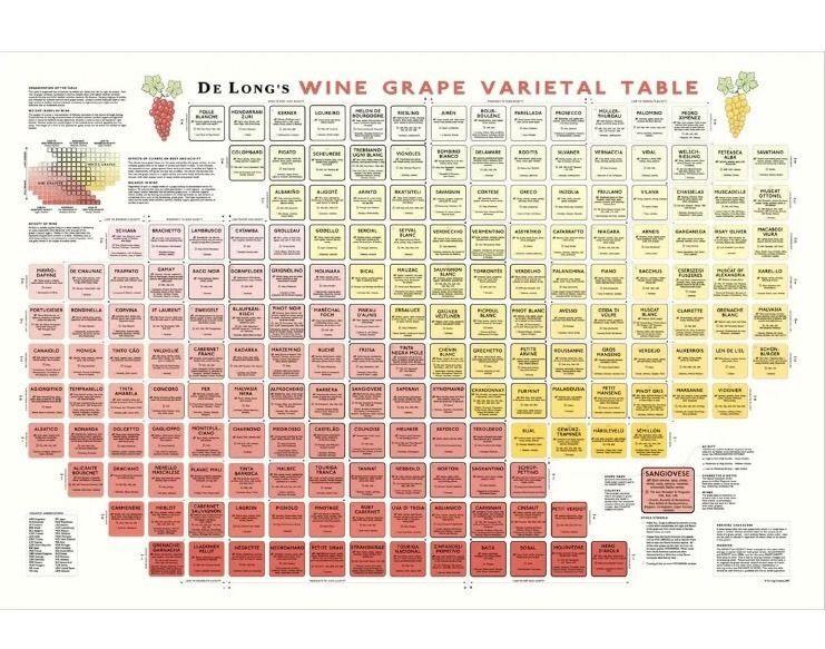 De long's Wine Grape Varietal Table Large Format Chart New ...
