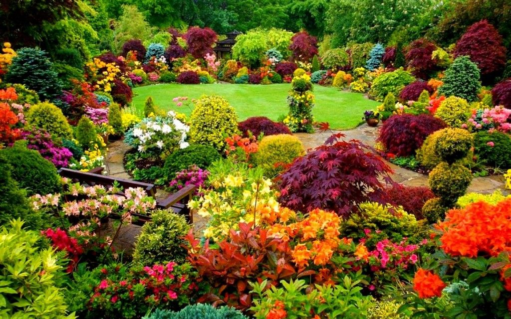 Backyard Flower Garden. Beautiful Backyards On A Budget | Backyards:  Inspiration For Garden Lovers