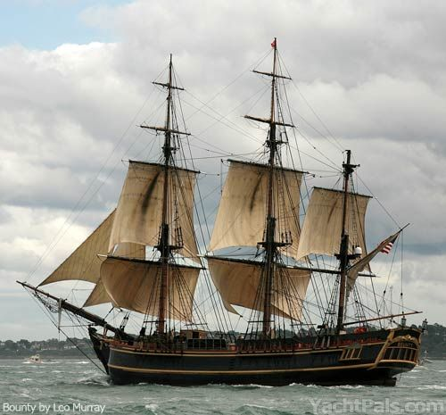 Tall Ship Bounty Jpg 500 465 Pixels With Images Sailing Ships