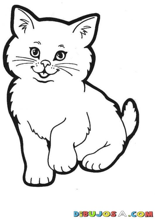 Pintar Gato | COLOREAR GATOS | Dibujo de un gato para colorear ...