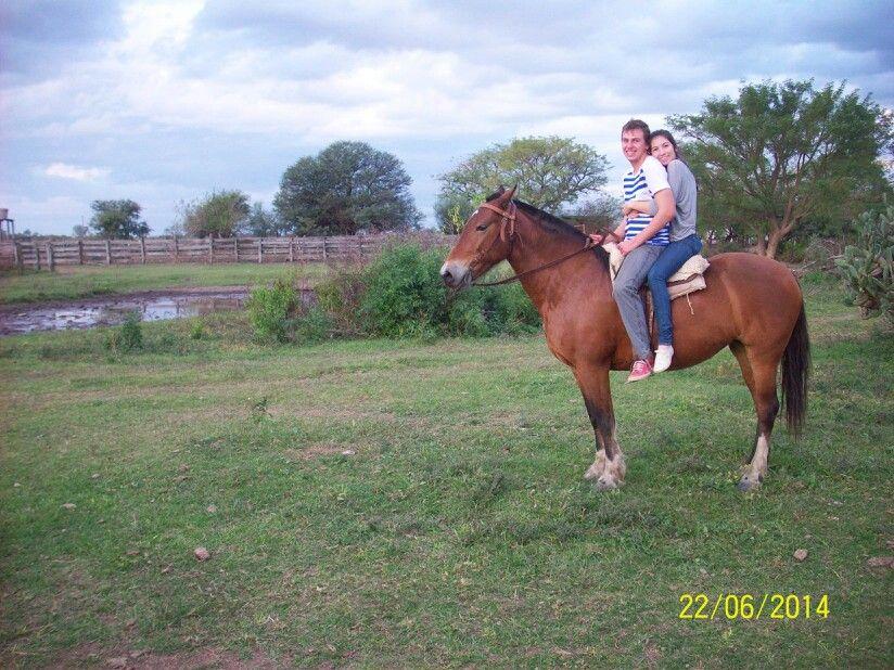 Caballo horses love couple