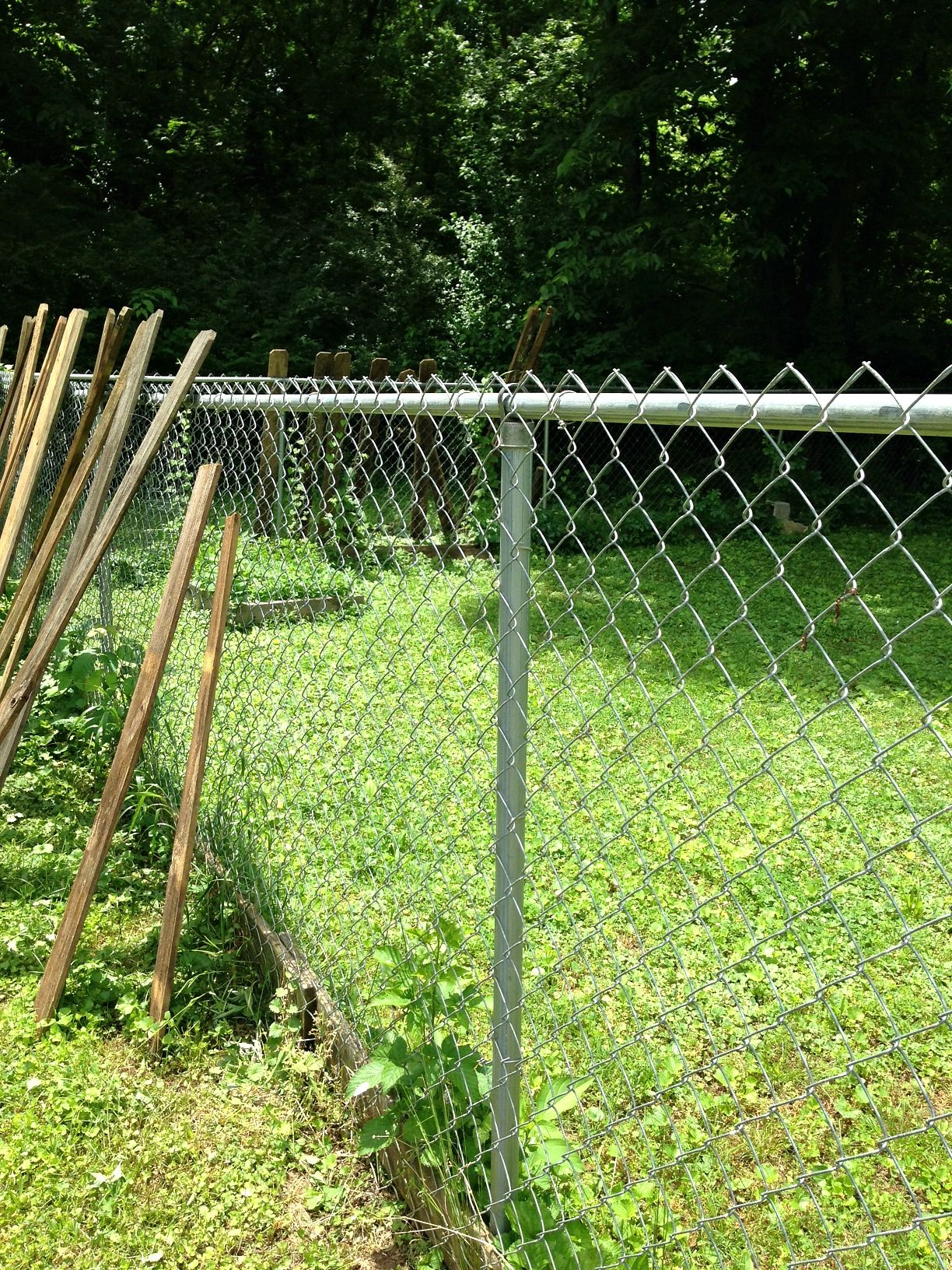 Upgrading A Chain Link Fence Chain Link Fence Front Yard Fence Cheap Fence