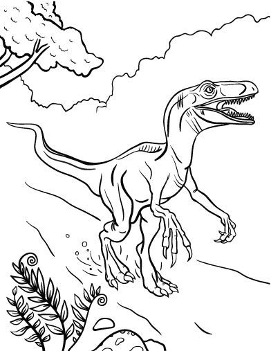 velociraptor coloring pages for kids - photo#2