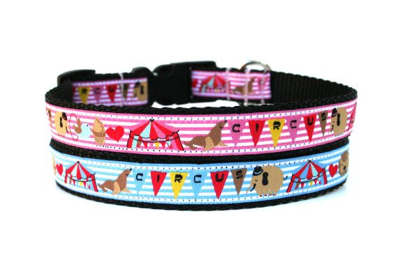 Circus Dog Collar By Wagologie Tiere