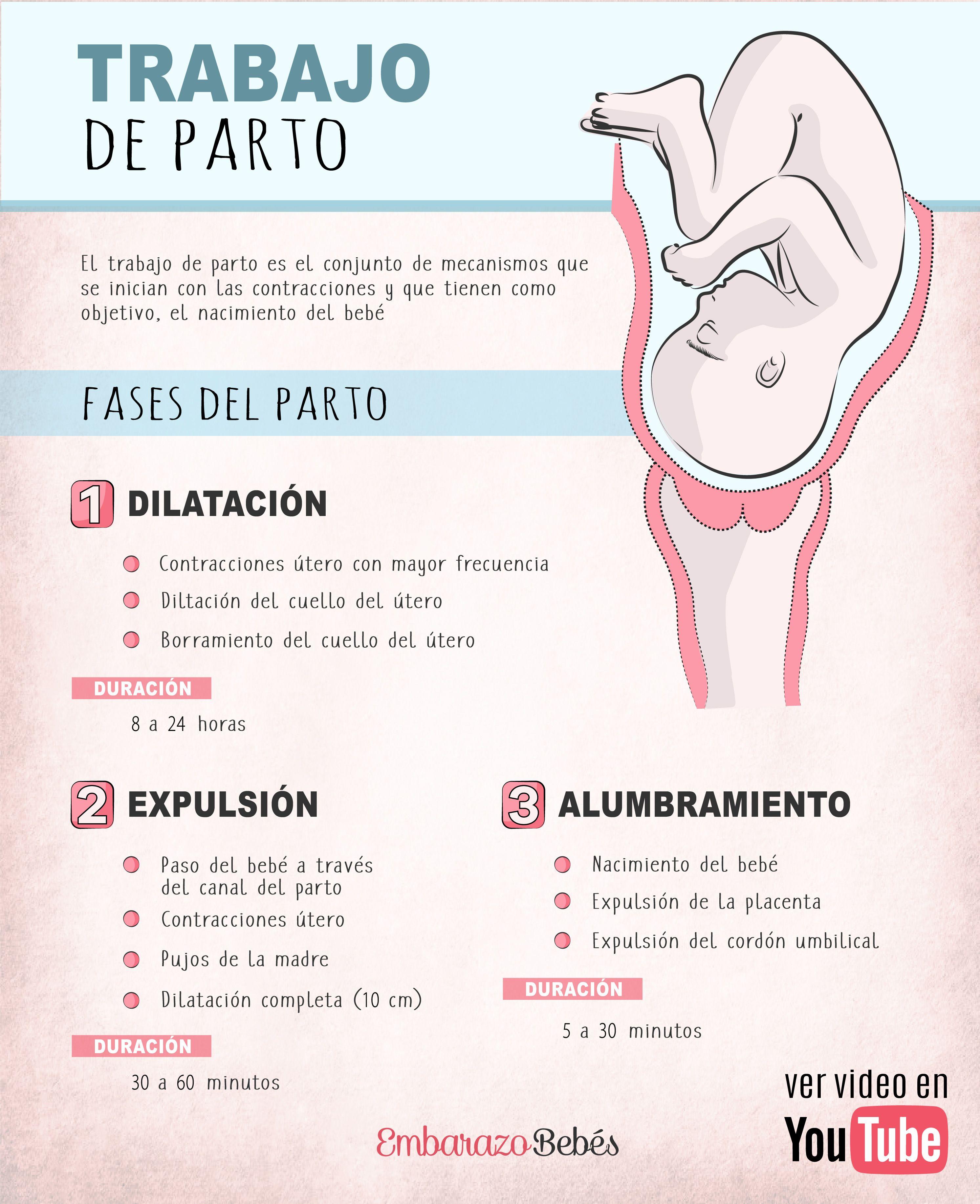 Pin En El Embarazo