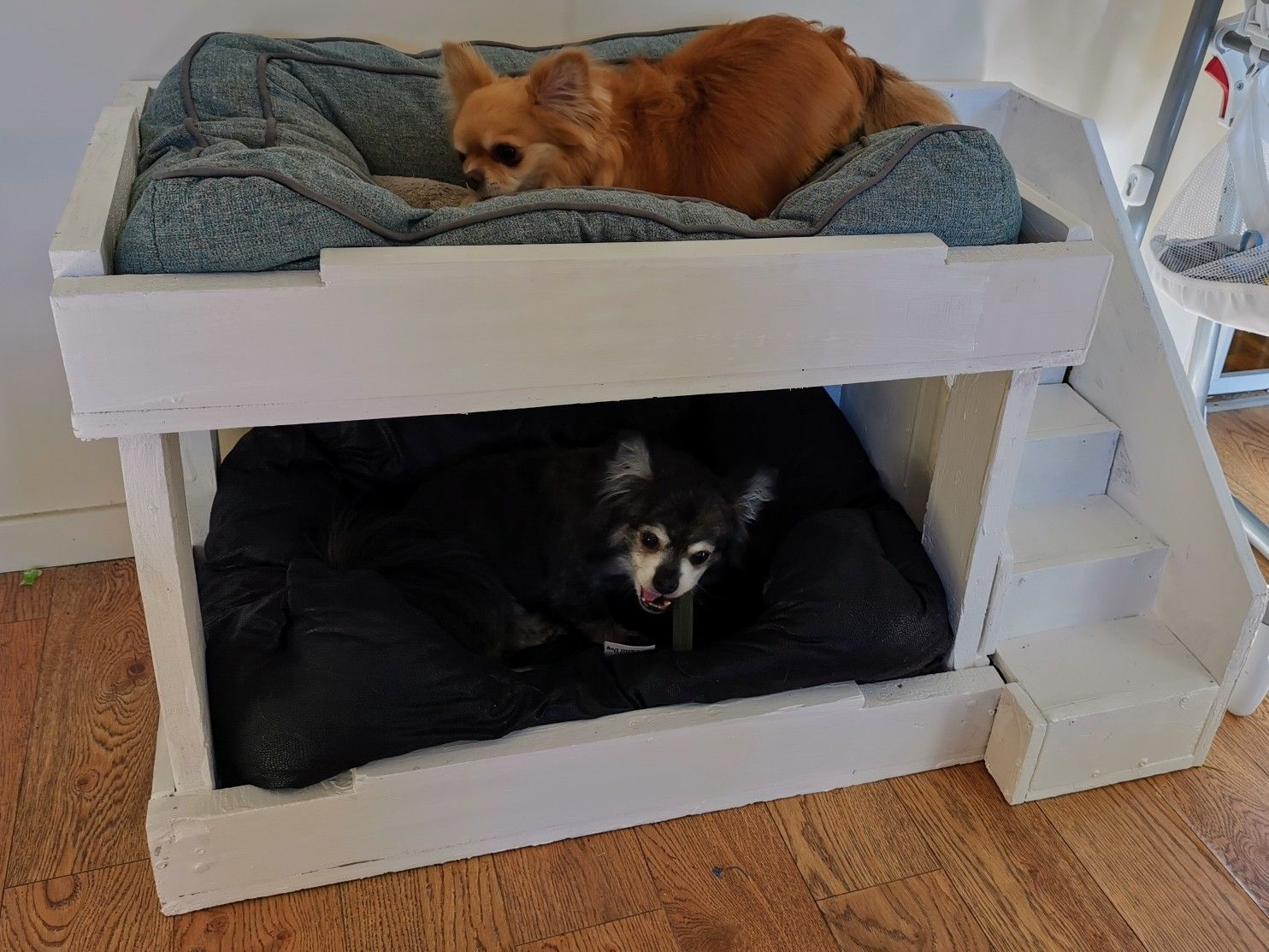 Dog Bunk Bed In 2020 Dog Bunk Beds Pallet Dog Beds Dog Bedroom