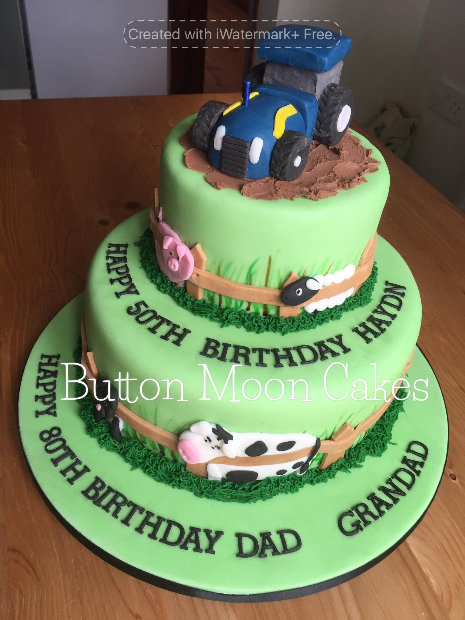 Farm animal and tractor themed two tier birthday cake Button Moon