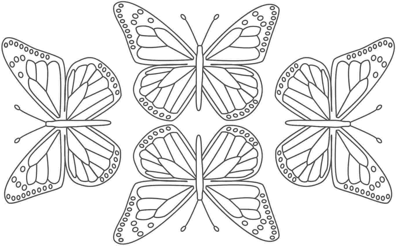 Butterfly monarch butterflies coloring pages travel