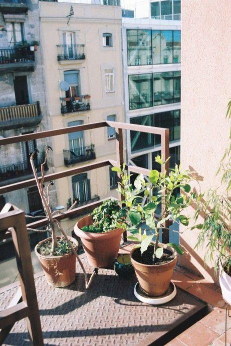 Freunde von Freunden — Xavier Mañosa — Ceramist, Studio & Apartment, Sant Cugat & Poblenou, Barcelona, Spain — http://www.freundevonfreunden.com/interviews/xavier-manosa/