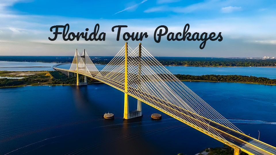 Explore thousands of floridatourspackage according to