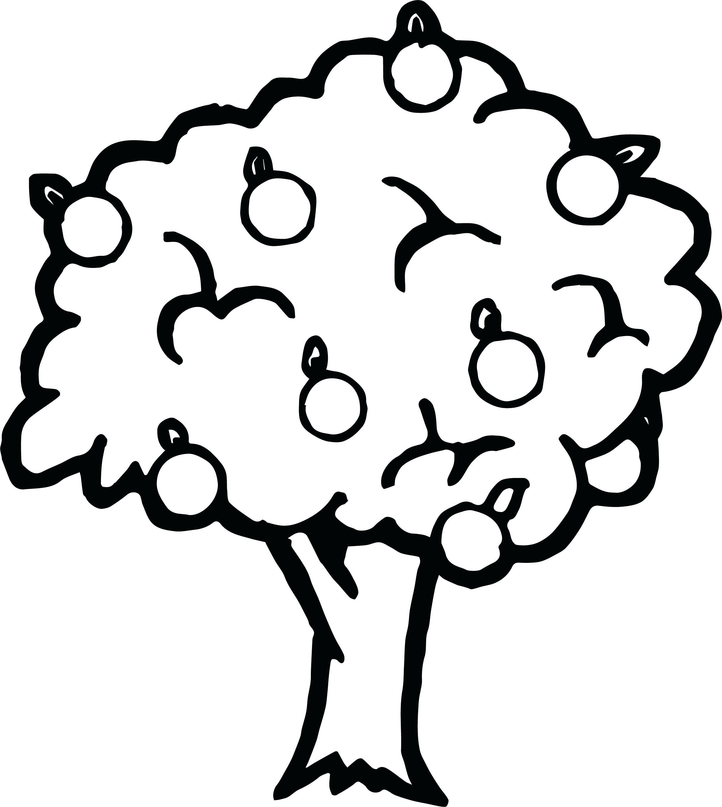 Apple Tree Coloring Page Beautiful Annie Apple Coloring