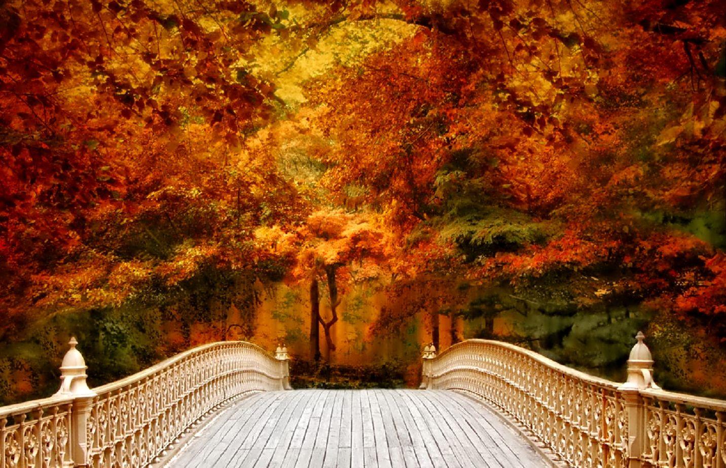 October Wallpapers High Quality #octoberwallpaper