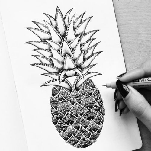 A sketch of a pineapple.