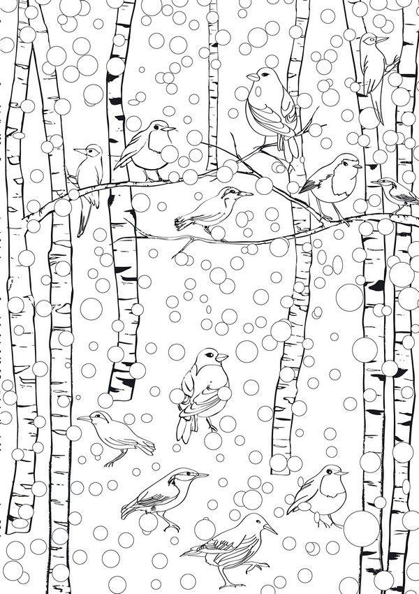 Vögel Im Winter Im Schnee Coloring Vögel Im Winter Ausmalbilder