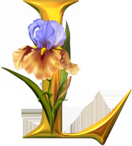 Alfabeto PNG Floral   Fondos de pantalla y mucho más