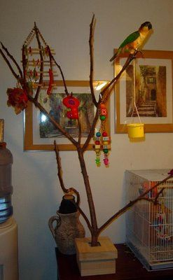 diy foraging tree with images  diy bird toys parrot