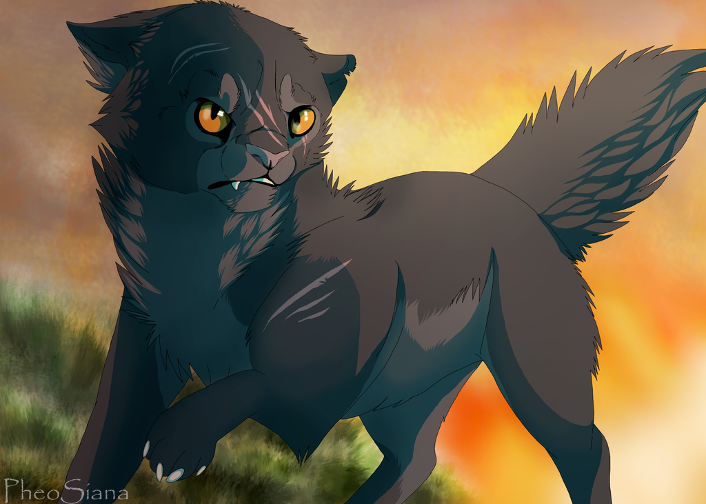 Yellowfang for her determination in battle with Dark Forest, killing Brokenstar twice even though it hurt and for caring for Cinderpelt.
