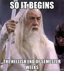 Memes About End Of Semester Google Search Midterms Humor Exams Memes Workout Humor