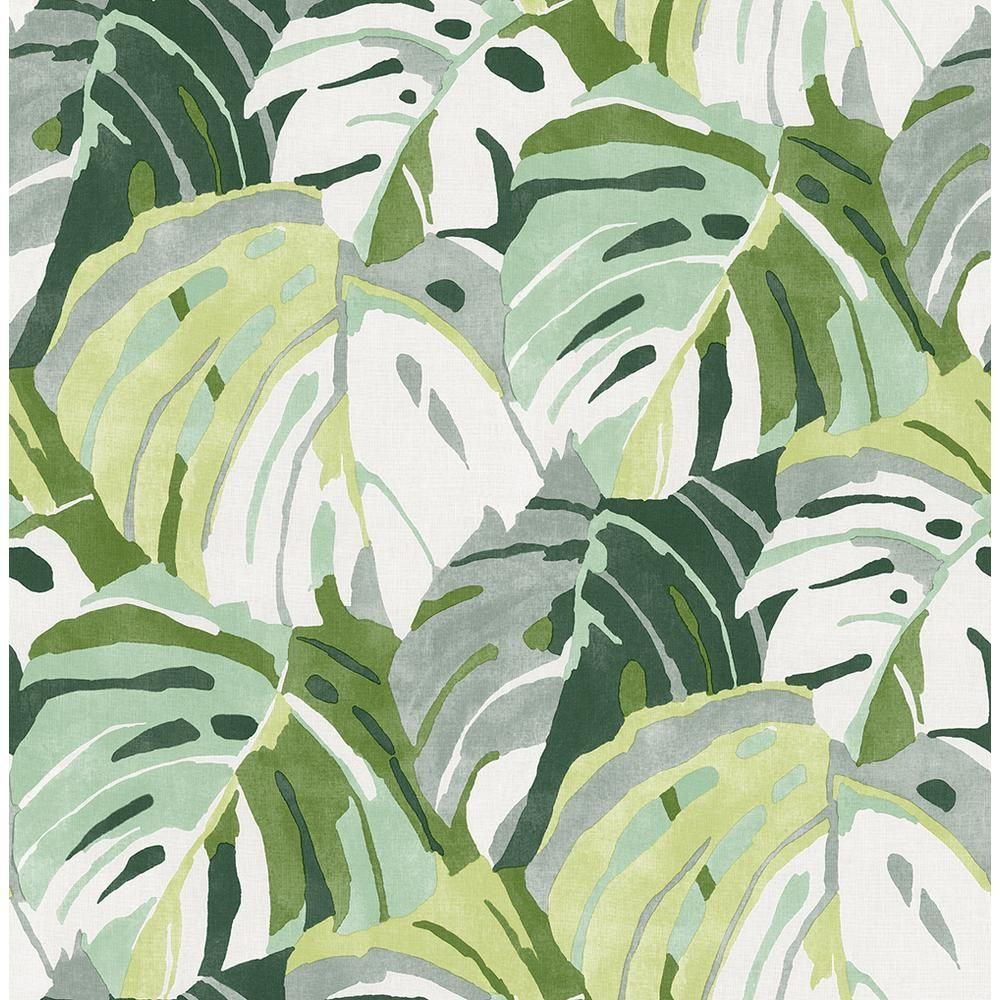 A Street Prints Samara Green Monstera Leaf Paper Strippable Roll Covers 56 4 Sq Ft 2969 26006 The Home Depot Leaf Wallpaper Green Wallpaper Brewster Wallpaper