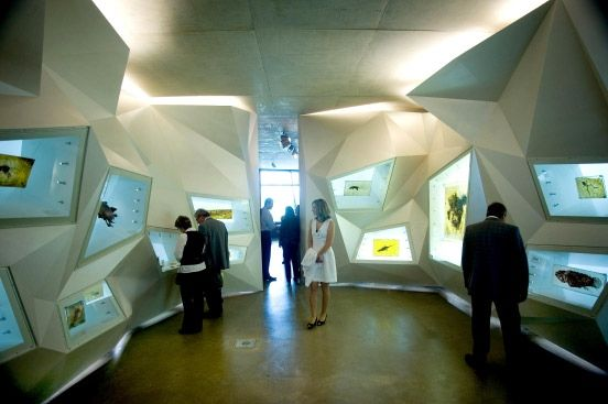 Etwa dieser Raum mit Exponaten erwartet einen im neuen Besucherzentrum der Grube Messel