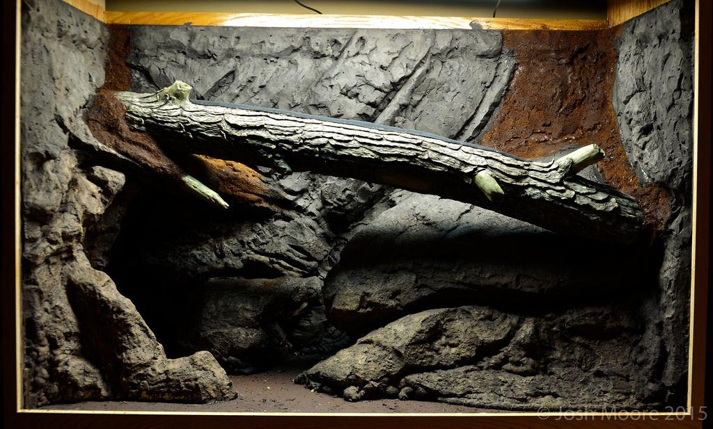Royal python mud wall burrow set up? Vivarium, Reptile