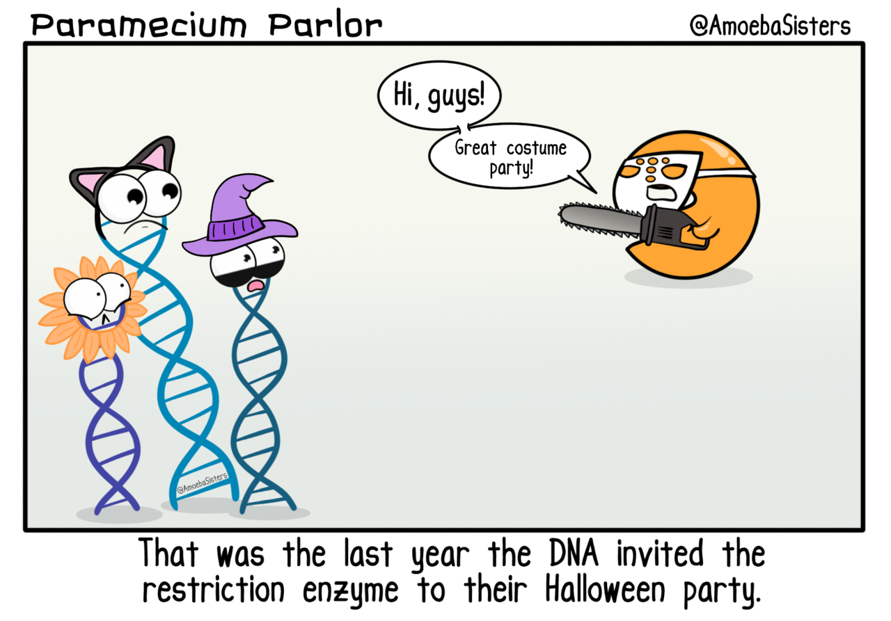 Restriction Enzyme Costume Fail