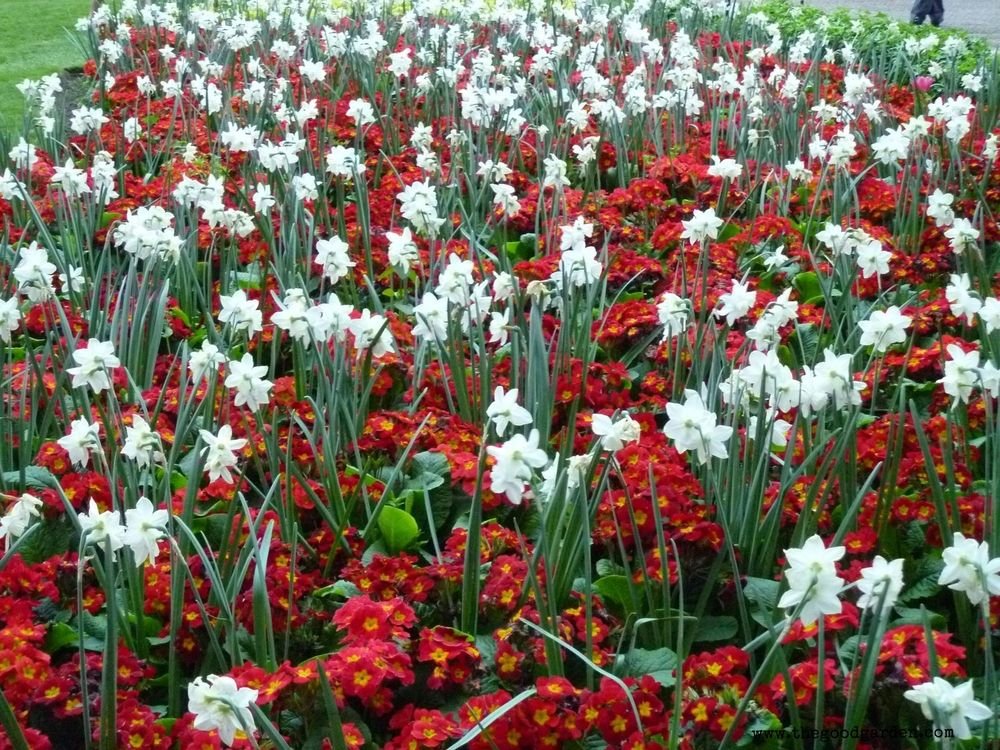ww.thegoodgarden.com - Color inspiration from Victoria Embankment.