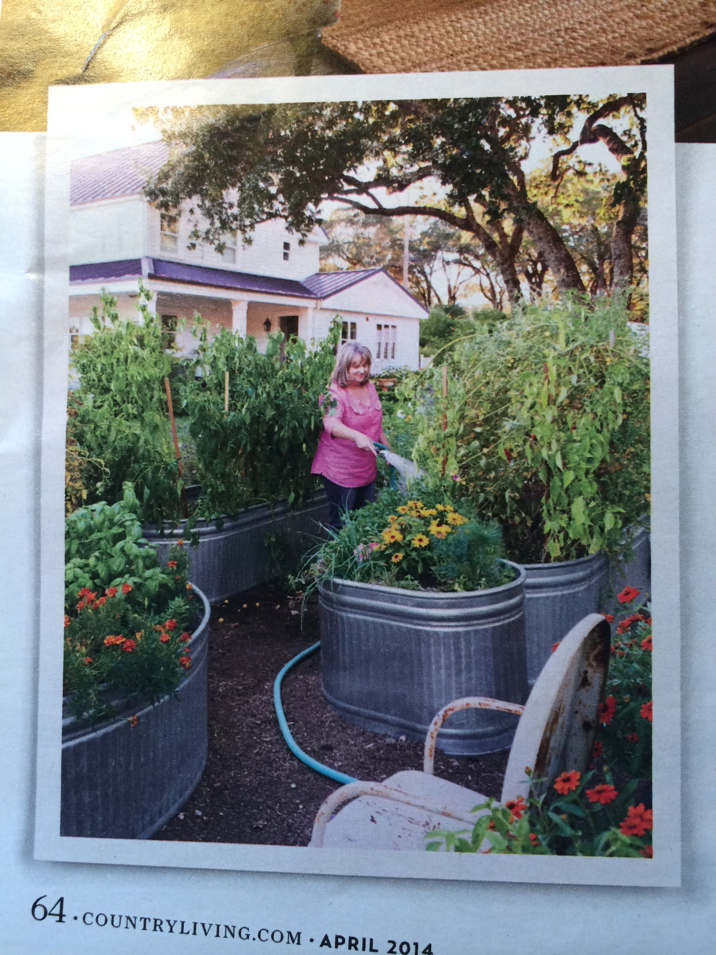 Galvanized troughs for oversized container garden idea