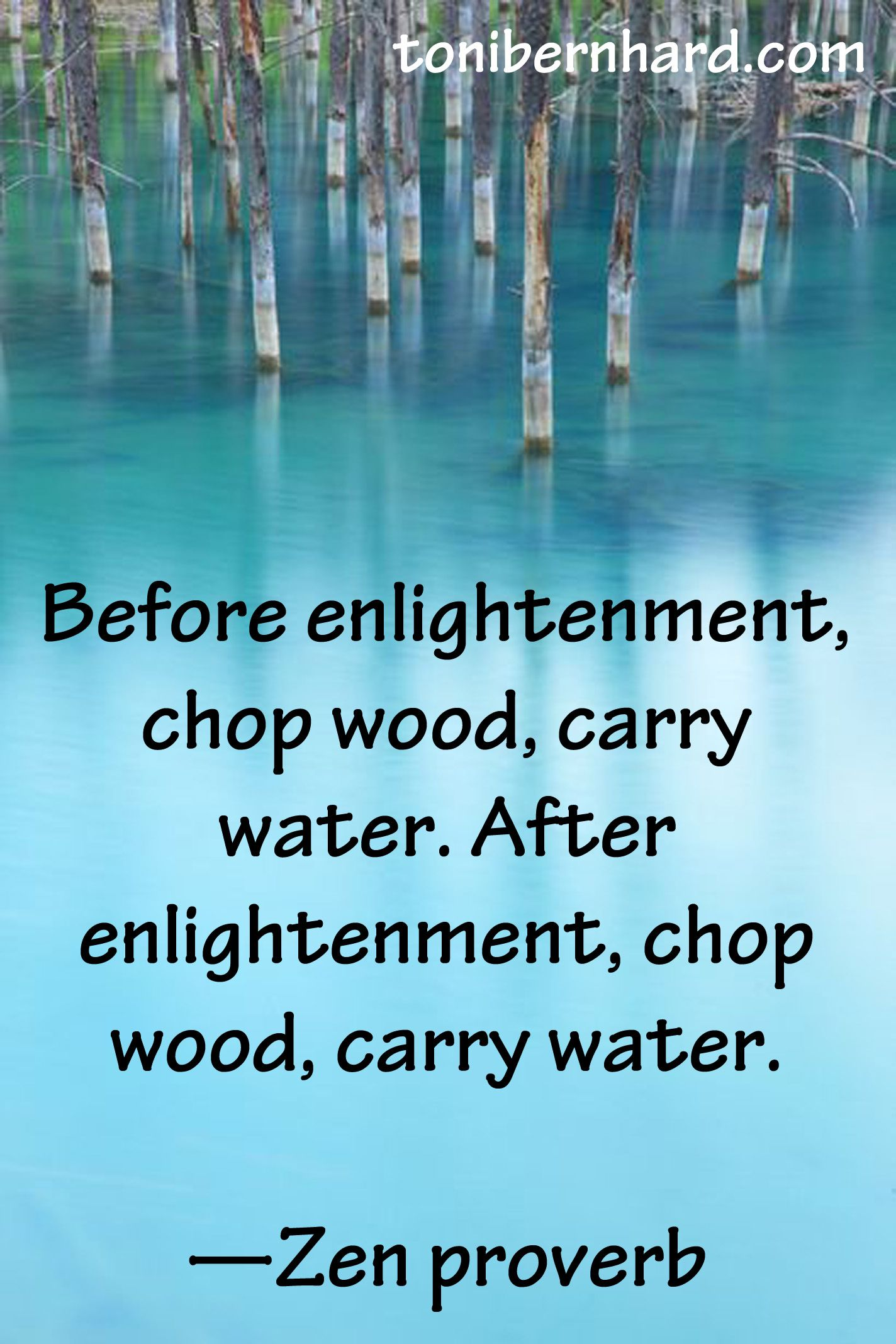Before Enlightenment Chop Wood Carry Water After Enlightenment Chop Wood Carry Water Zen Proverb Zen Quotes Lao Tzu Quotes Pema Chodron Quotes