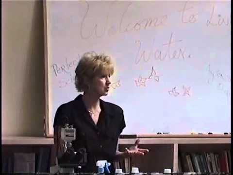 The true Perfect Science seminar video, Part 2.wmv